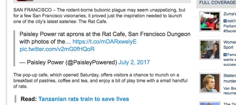 e062c-enca-news-paisley-power-rat-aprons-at-san-francisco-rat-cafe